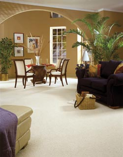 Carpet Flooring Decatur IL